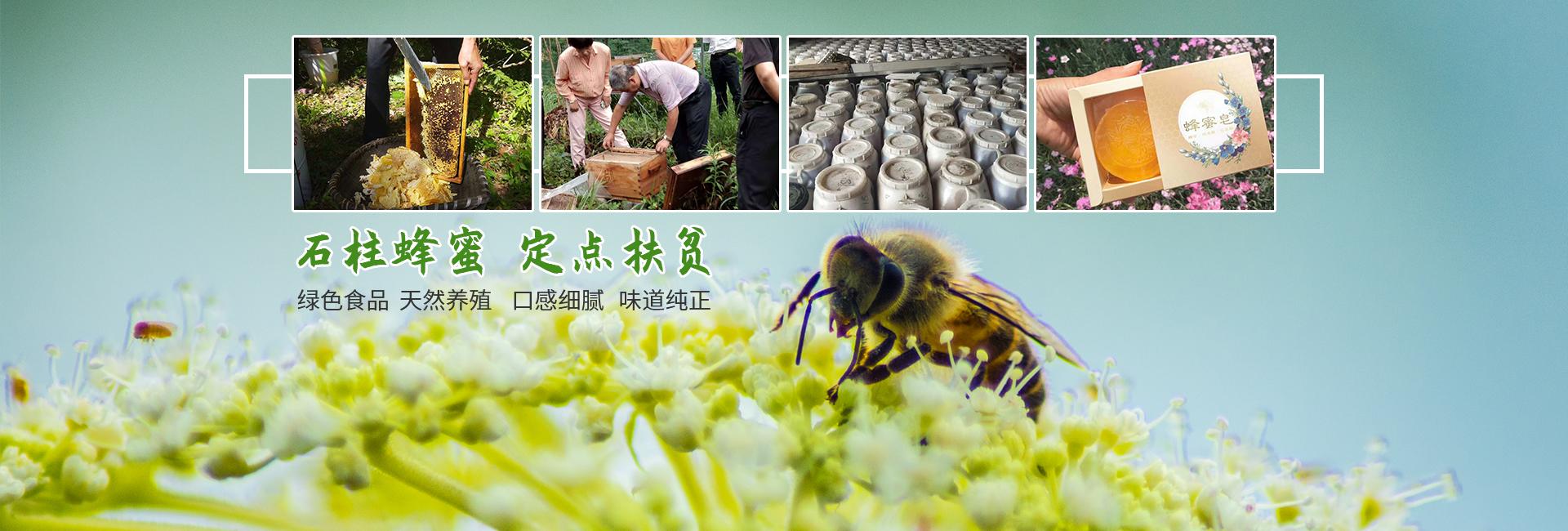 重庆石柱土蜂蜜